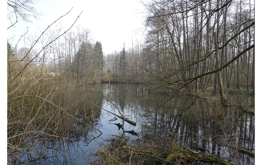 Teich am Eicher Stollen (2015)