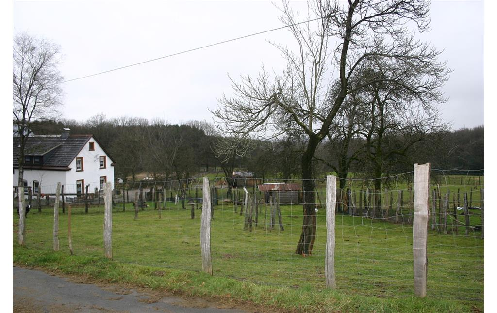 Obstwiese in Birken (2008)