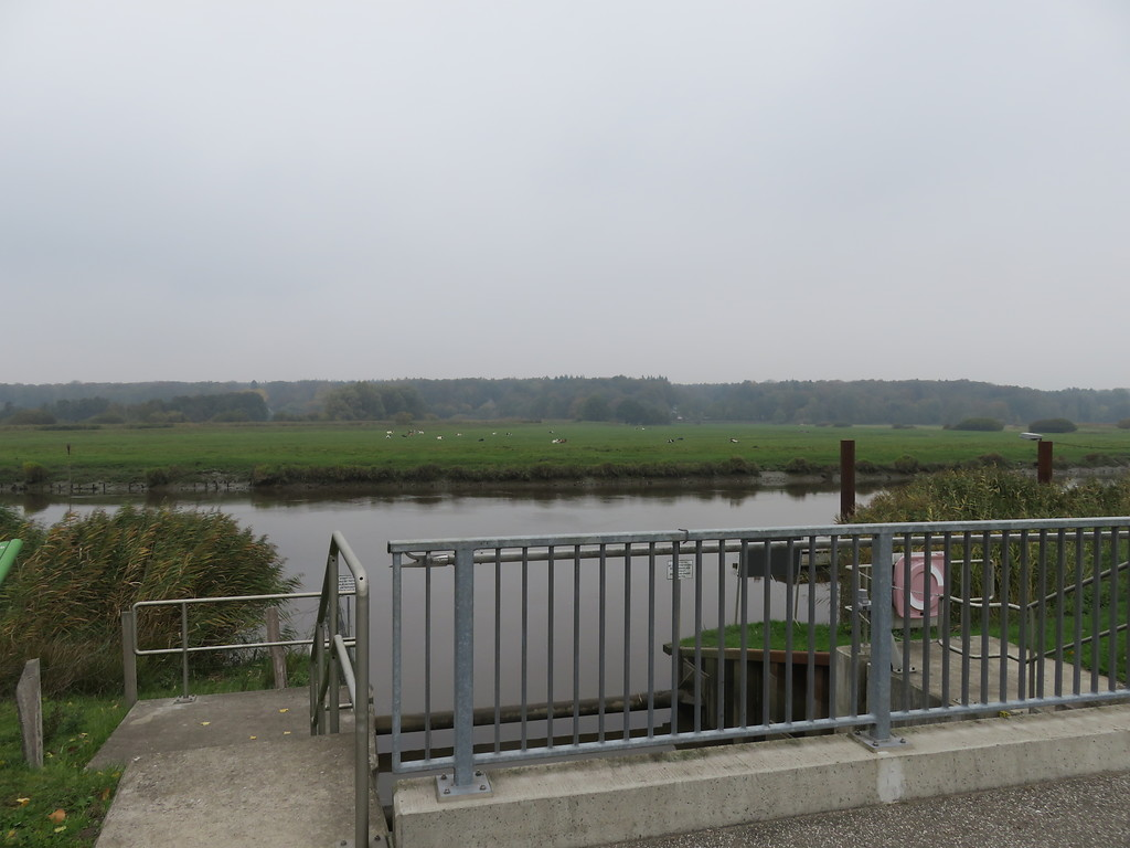 Breitenburger Kanal und Schleuse (2018)